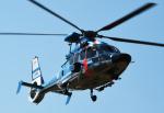 チャーリーマイクさんが、東京ヘリポートで撮影した警視庁 EC155B1の航空フォト(写真)