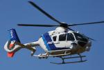 チャーリーマイクさんが、東京ヘリポートで撮影したオールニッポンヘリコプター EC135T2の航空フォト(写真)