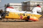 まんぼ しりうすさんが、名古屋飛行場で撮影した航空自衛隊 KV-107IIA-5の航空フォト(写真)