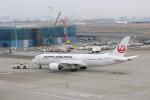 わいどあさんが、羽田空港で撮影した日本航空 787-8 Dreamlinerの航空フォト(写真)