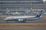 わいどあさんが、羽田空港で撮影した全日空 787-8 Dreamlinerの航空フォト(写真)
