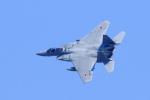 nagoya888さんが、名古屋飛行場で撮影した航空自衛隊 F-15J Eagleの航空フォト(写真)