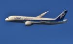 kenko.sさんが、成田国際空港で撮影した全日空 787-8 Dreamlinerの航空フォト(写真)