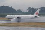 pringlesさんが、鹿児島空港で撮影した日本航空 767-346/ERの航空フォト(写真)