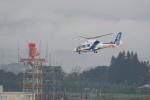 pringlesさんが、鹿児島空港で撮影したオールニッポンヘリコプター AS365N2 Dauphin 2の航空フォト(写真)