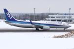 kinsanさんが、紋別空港で撮影した全日空 737-881の航空フォト(写真)