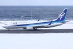kinsanさんが、稚内空港で撮影した全日空 737-881の航空フォト(写真)