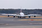 mojioさんが、成田国際空港で撮影したアシアナ航空 A380-841の航空フォト(飛行機 写真・画像)