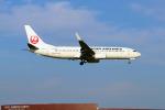 szkkjさんが、成田国際空港で撮影した日本航空 737-846の航空フォト(写真)