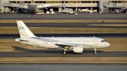 westtowerさんが、羽田空港で撮影したコムラックス・マルタ A319-115CJの航空フォト(飛行機 写真・画像)