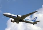 マウンテンエアウェイズさんが、成田国際空港で撮影した全日空 787-8 Dreamlinerの航空フォト(写真)