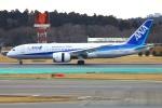 Tomo_mczさんが、成田国際空港で撮影した全日空 787-8 Dreamlinerの航空フォト(写真)