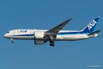 みなかもさんが、羽田空港で撮影した全日空 787-8 Dreamlinerの航空フォト(写真)