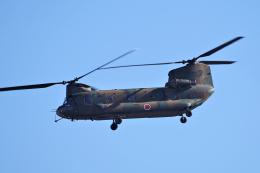 yabyanさんが、名古屋飛行場で撮影した陸上自衛隊 CH-47Jの航空フォト(飛行機 写真・画像)