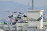 yabyanさんが、名古屋飛行場で撮影した海上自衛隊 XSH-60Kの航空フォト(写真)
