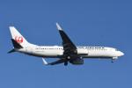 kuro2059さんが、羽田空港で撮影した日本航空 737-846の航空フォト(写真)