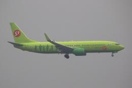 航空フォト:VQ-BRQ S7航空 737-800