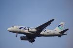 JA8037さんが、フランクフルト国際空港で撮影したアドリア航空 A319-132の航空フォト(写真)