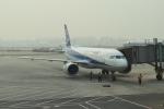 Kanatoさんが、北京首都国際空港で撮影した全日空 A320-211の航空フォト(写真)