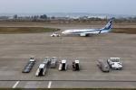 demodori6さんが、富山空港で撮影した全日空 737-881の航空フォト(写真)