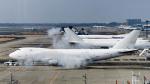 パンダさんが、成田国際空港で撮影したアトラス航空 747-4KZF/SCDの航空フォト(飛行機 写真・画像)