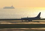 ふじいあきらさんが、羽田空港で撮影した全日空 737-781の航空フォト(写真)