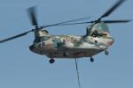 スカルショットさんが、名古屋飛行場で撮影した航空自衛隊 CH-47J/LRの航空フォト(写真)