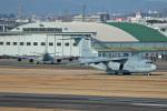 スカルショットさんが、名古屋飛行場で撮影した航空自衛隊 C-2の航空フォト(写真)