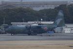 akinarin1989さんが、名古屋飛行場で撮影した航空自衛隊 C-130H Herculesの航空フォト(写真)