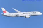 いおりさんが、羽田空港で撮影した日本航空 787-8 Dreamlinerの航空フォト(写真)
