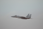 bakさんが、岐阜基地で撮影した航空自衛隊 F-15J Eagleの航空フォト(写真)