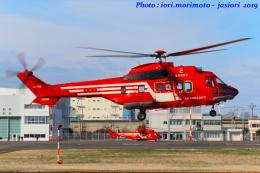 いおりさんが、東京ヘリポートで撮影した東京消防庁航空隊 AS332L1の航空フォト(写真)