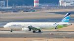 パンダさんが、成田国際空港で撮影したエアプサン A321-232の航空フォト(写真)