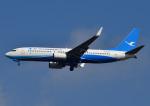じーく。さんが、成田国際空港で撮影した厦門航空 737-86Nの航空フォト(写真)