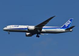 じーく。さんが、成田国際空港で撮影した全日空 787-9の航空フォト(写真)