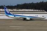 たみぃさんが、秋田空港で撮影した全日空 737-8ALの航空フォト(写真)