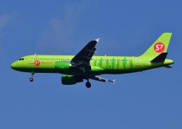 じーく。さんが、成田国際空港で撮影したS7航空 A320-214の航空フォト(写真)