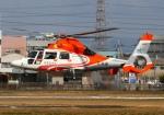 LOTUSさんが、八尾空港で撮影したエアバス・ヘリコプターズ・ジャパン AS365N3 Dauphin 2の航空フォト(写真)