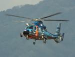 otromarkさんが、八尾空港で撮影した神奈川県警察 AS365N3 Dauphin 2の航空フォト(写真)