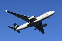 kuro2059さんが、羽田空港で撮影した中国国際航空 A330-243の航空フォト(飛行機 写真・画像)