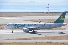FLYING  HONU好きさんが、関西国際空港で撮影した春秋航空 A320-214の航空フォト(飛行機 写真・画像)