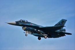 REDさんが、岐阜基地で撮影した航空自衛隊 F-2Aの航空フォト(写真)