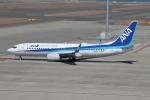 RAOUさんが、中部国際空港で撮影した全日空 737-8ALの航空フォト(写真)