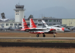 ニセカメⅡさんが、新田原基地で撮影した航空自衛隊 F-15J Eagleの航空フォト(写真)