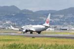 kuro2059さんが、伊丹空港で撮影した日本航空 737-846の航空フォト(写真)