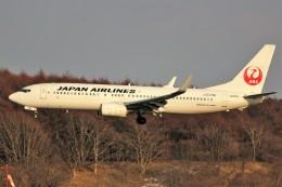 ばっきーさんが、新千歳空港で撮影した日本航空 737-846の航空フォト(写真)