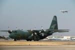 Wasawasa-isaoさんが、名古屋飛行場で撮影した航空自衛隊 C-130H Herculesの航空フォト(写真)