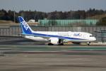 utarou on NRTさんが、成田国際空港で撮影した全日空 787-8 Dreamlinerの航空フォト(写真)