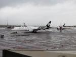 OS52さんが、オークランド空港で撮影したニュージーランド航空 777-219/ERの航空フォト(写真)