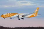 セブンさんが、新千歳空港で撮影したスクート 787-9の航空フォト(飛行機 写真・画像)